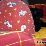Casper_02