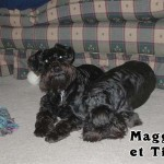 Maggie_01