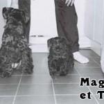 Maggie_03