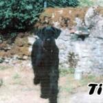Titof_02